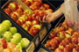 Reuters – A customer selects fruits at a supermarket in Sydney in this file photo from October 21, 2008. (Daniel …