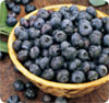 New Findings Show Astounding Cancer Prevention Effects of Black Raspberries, Blueberries, Olive Leaves and Green Tea