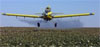 AP – FILE - In this Sept. 25, 2001 file photo, Crop dusting planes dust cotton crops in Lemoore, Calif. California's …