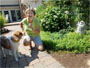Cancer survivor Debra Radvany, with her dog Roxy near a wall of clematis, finds peace in her garden in Harleysville, Pa.