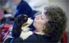 Leslie Palazzo-Kane plays with Kane, a Cavalier King... (Kathleen O'Rourke/Staff Photographer)